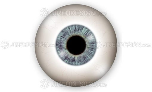 Eyeball and globe illustration – external view #an0022