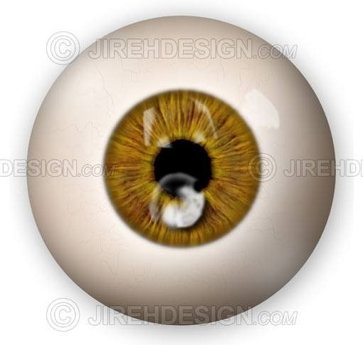 Fungal corneal ulcer graphic illustration #co0118