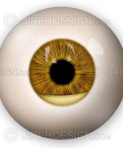 Hypopyon eye infection