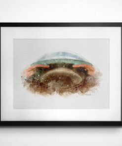 eye anatomy art print gift for optometry student
