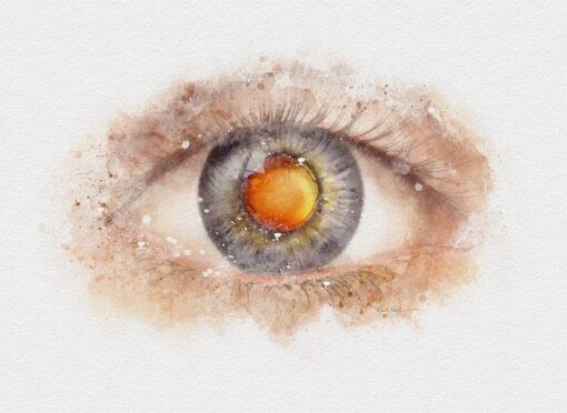 Cataract doctor gift watercolor art print