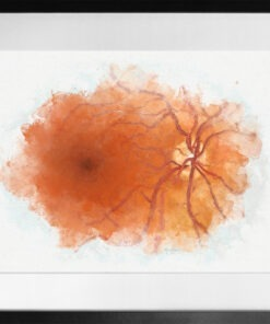 Watercolor Mixed Media Retina Anatomy framed 2
